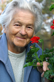 Elderly Lady, aging with dignity graphic